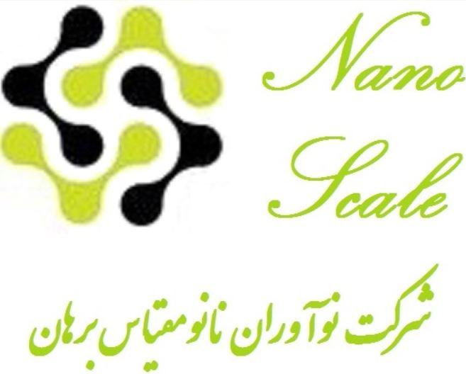 Borhan Nano Scale innovator Company