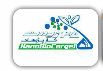 Nanobiocargel