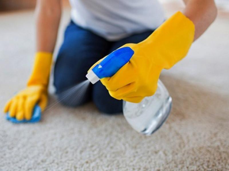 Carpet Cleaner Spray